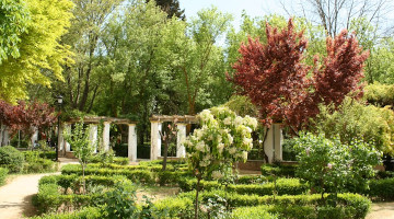 Parque Rodríguez Penalva